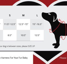 Dog Harness with a choke-free style 2