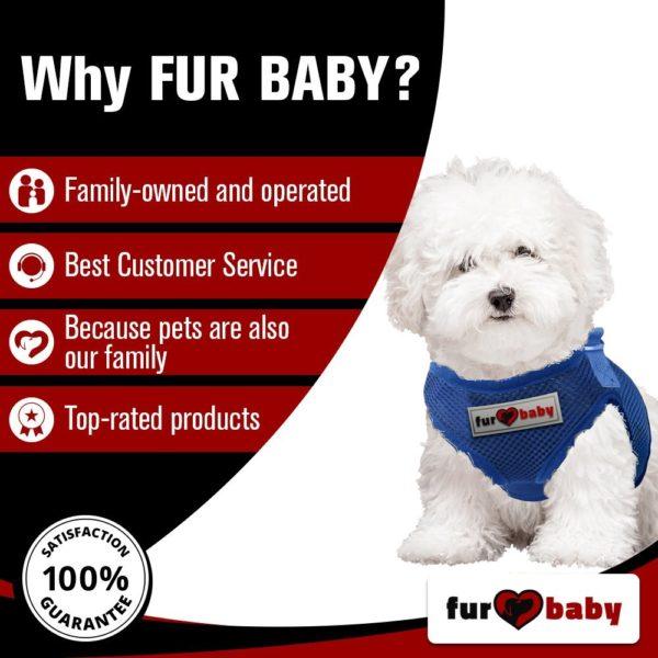 Dog Harness with a choke-free style 4