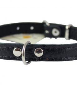 Genuine Leather Felt Padded Dog Collar X-Small 2