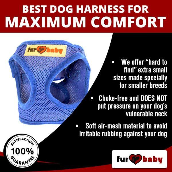 Dog Harness with a choke-free style 3