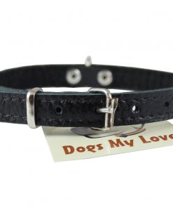 Genuine Leather Felt Padded Dog Collar X-Small