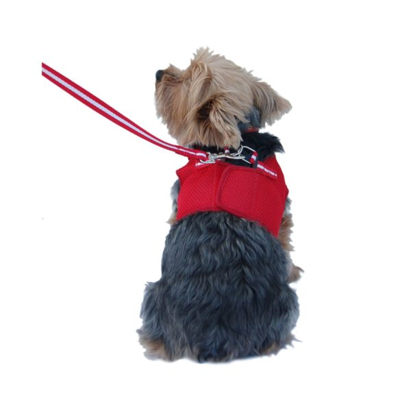 Anima Red Mesh Jersey with Red Trim Harness and Leash Set, XX-Small