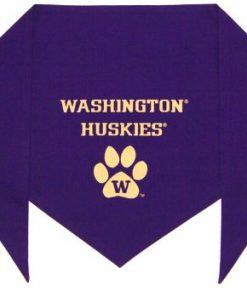 "University of Washington Huskies Bandana (S) Ties on 9"" - 10"" neck - 1"