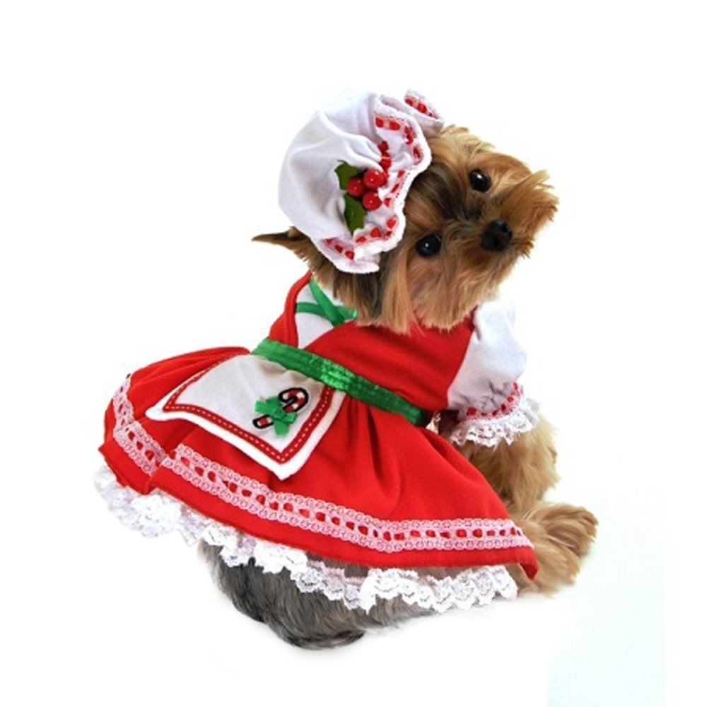 Candy Cane Cutie Dog Costume Size X Small Chihuahua Kingdom