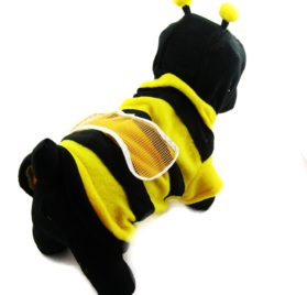 Alfie Couture Designer Pet Apparel - Bumble Bee Costume - 1