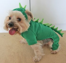 Alfie Couture Designer Pet Apparel - Franco Dinosaur Costume - 2