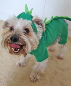 Alfie Couture Designer Pet Apparel - Franco Dinosaur Costume - 3