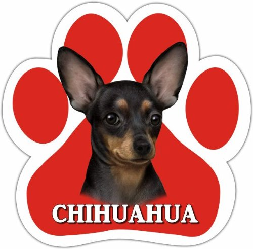 Chihuahua Black Car Magnet With Unique Paw Shaped Design Measures 5.2 by 5.2 Inches Covered In High Quality UV Gloss For Weather Protection