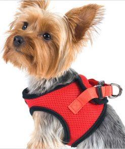 "Ultra USA Choke-Free Dog Harness - Scarlett Red - MD (16"" - 19"" girth)"