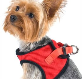 "Ultra USA Choke-Free Dog Harness - Scarlett Red - MD (16"" - 19"" girth)"