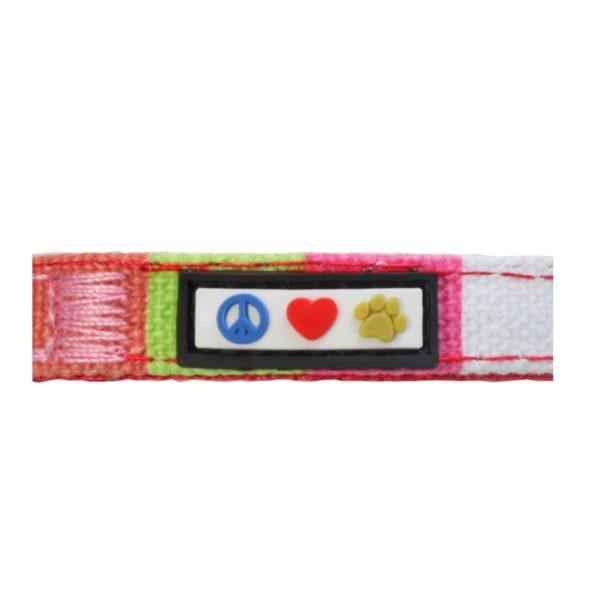 Pawtitas Polyester Dog Collar Multicolor 4