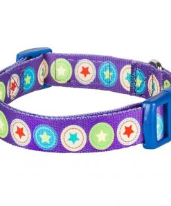 Blueberry Pet Dark Orchid Bold Round Star and Sapphire Naughty Boy Designer Dog Collar 2