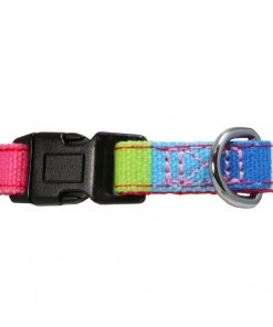 Pawtitas Polyester Dog Collar Multicolor 3