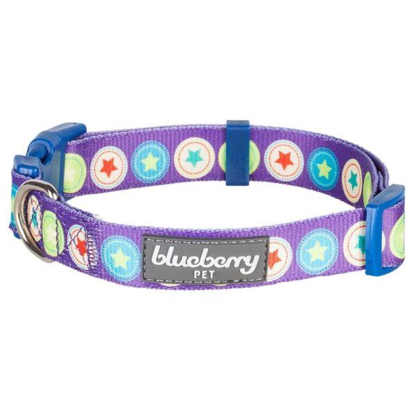 Blueberry Pet Dark Orchid Bold Round Star and Sapphire Naughty Boy Designer Dog Collar 3