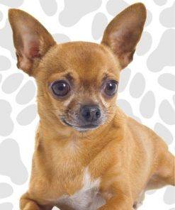 Got Yo Gifts Chihuahua Fun Flags 4