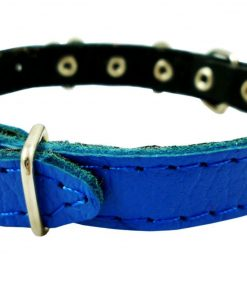 Genuine Leather Designer Dog Collar 2