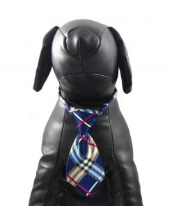 Alfie Pet by Petoga Couture - Qun Formal Dog Tie and Adjustable Collar Blue 4