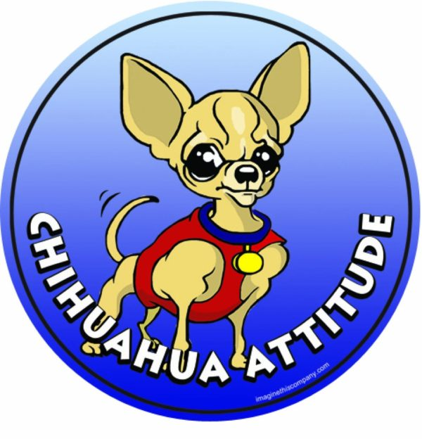 Imagine This 4-3/4-Inch by 4-3/4-Inch Car Magnet Dog Attitude Chihuahua