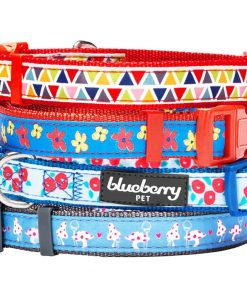 Blueberry Pet Vibrant Triangle Floral Garden and Mushroom Pattern Dog collar