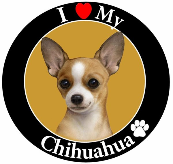 """I Love My Chihuahua"" Car Magnet With Realistic Looking Chihuahua Photograph In The Center Covered In High Quality UV Gloss For Weather and Fading Protection Circle Shaped Magnet"