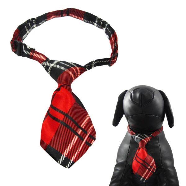 Qun Formal Dog Tie and Adjustable Collar 3