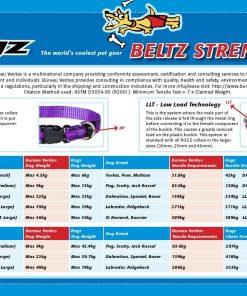 Rogz Fancy Dress Small 3/8-Inch Jellybean Dog Collar, Purple Chrome Design 2