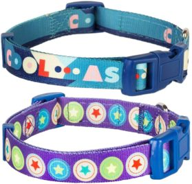 Blueberry Pet Dark Orchid Bold Round Star and Sapphire Naughty Boy Designer Dog Collar
