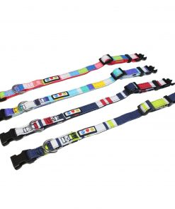 Pawtitas Polyester Dog Collar Multicolor 2