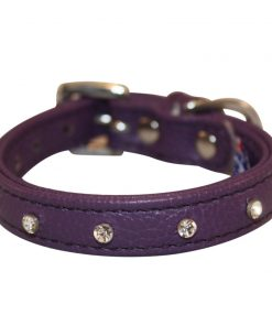 Rhinestones Bling Leather Dog Collar, Padded, Double-Ply, Riveted Settings, Purple