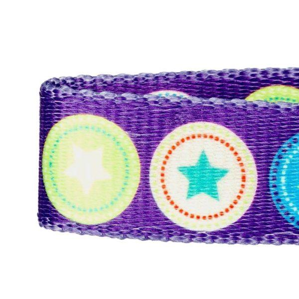 Blueberry Pet Dark Orchid Bold Round Star and Sapphire Naughty Boy Designer Dog Collar 4