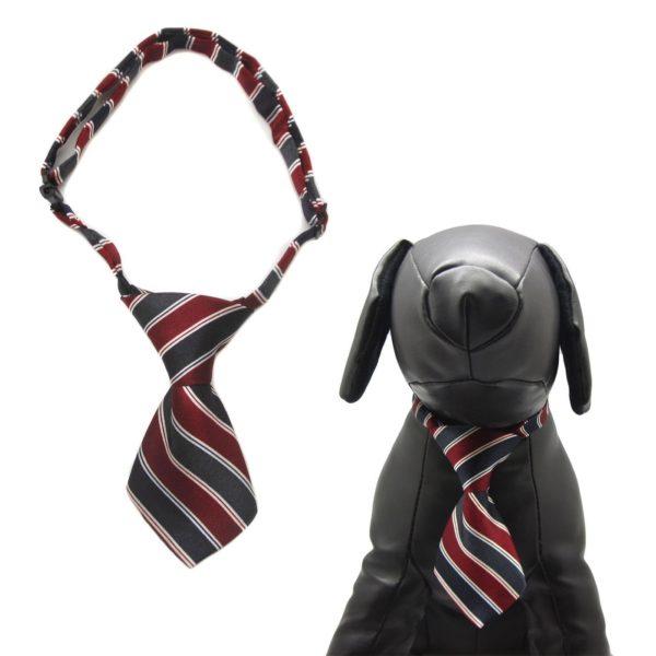 Qun Formal Dog Tie and Adjustable Collar 2