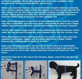 Rogz Dog H-Harness 3