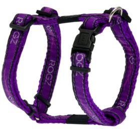 Rogz Fancy Dress Small 3/8-Inch Jellybean Adjustable Dog H-Harness, Purple Chrome Design