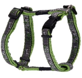 Rogz Fancy Dress Small 3/8-Inch Jellybean Adjustable Dog H-Harness, Lime Bone Design