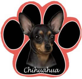 Black Chihuahua Dog Paw Non-Slip Mousepad