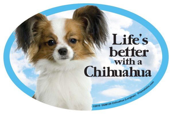 Chihuahua (long) Oval Dog Magnet for Cars