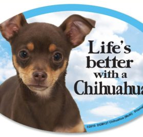 Chihuahua (multi-color) Oval Dog Magnet for Cars