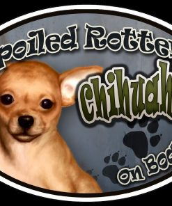 Chihuahua (tan) - Spoiled Rotten Oval Dog Magnet for Cars