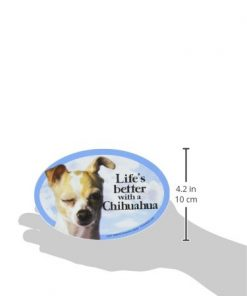 Prismatix Decal Cat and Dog Magnets, Chihuahua Apple 2