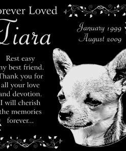 "Personalized Chihuahua Dog Pet Memorial 12""x12"" Engraved Black Granite Grave Marker Head Stone Plaque TIA1"