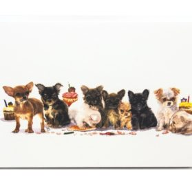 Rainbow Card Company Churro and The Gang Birthday Card with Envelope