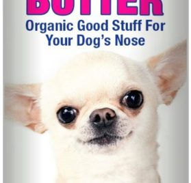 The Blissful Dog Smooth Coat Chihuahua Nose Butter, 0.50-Ounce