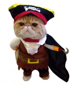 Alfie Pet Apparel by Petoga Couture - Jack the Pirate for Party Halloween Special Events Costume
