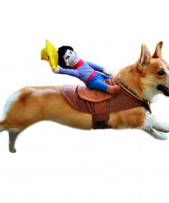 Alfie Pet Apparel by Petoga Couture - Tony the Cowboy for Party Halloween Special Events Costume