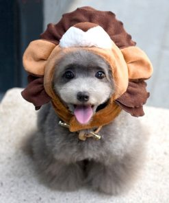 Alfie Pet by Petoga Couture - Qeno Lion Hat for Party Halloween Special Events Costume (for Small Dogs & Cats) 2