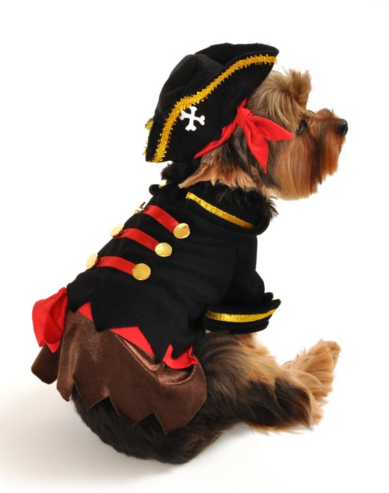 """Halloween Pet Costume PIRATE for SMALL Dogs /& Cats 10-12/"""" New!"""