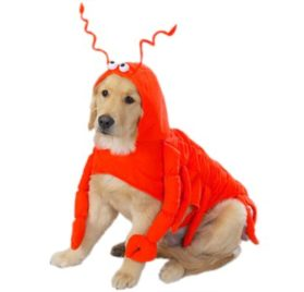 Casual Canine Lobster Paws Dog Costume, X-Small (fits lengths up to 8), Red-Orange