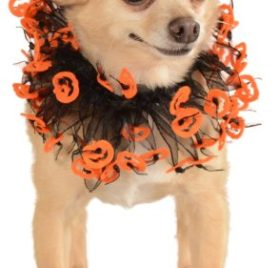 Rubies Costume Halloween Classics Collection Pet Costume, Small to Medium, Black and Orange Jack-O-Lantern Collar
