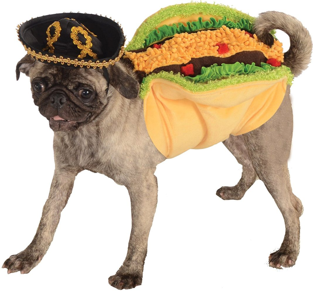 10 Awesome Costumes to Sew for Halloween! | Sewing Furniture |Taco Dog Halloween Costume Pattern