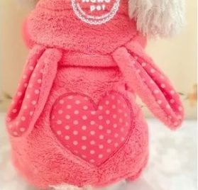 HSE Pet dog toy teddy bear than a Chihuahua puppy dog VIP milk coral cashmere clothing apparel fall and winter clothes,XS